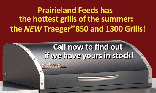 Home-New Traegers Ad