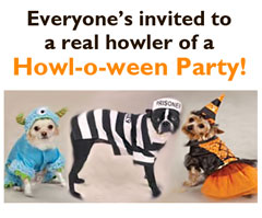Calling all costumed dogs for a benefit Halloween Party October 29 at Prairieland Feeds!